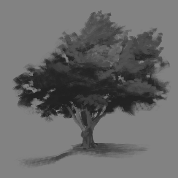 Grayscale study of a tree