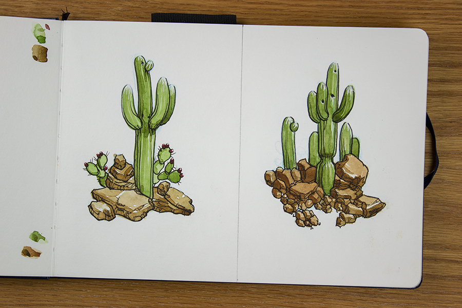 Watercolor and ink studies of cactuses and rocks.